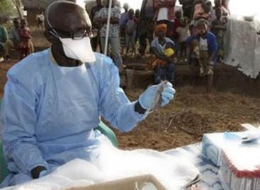 Lassa fever hits Abuja