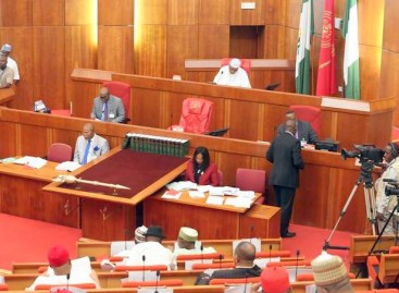 Senators disagree over Buhari's comment on wife