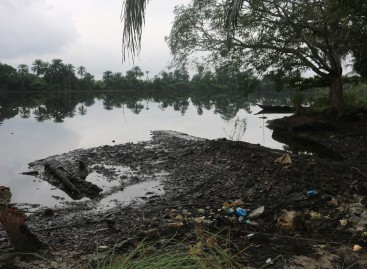 IYC backs Ogoni clean-up exercise