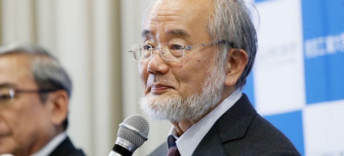 Japanese wins Nobel Prize for Medicine
