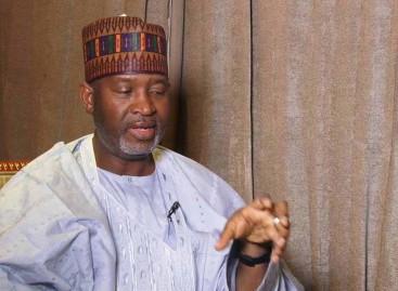 Cattle colonies: Nigerian govt assures of adequate compensation for landowners