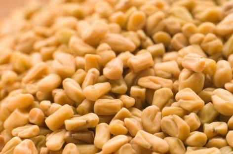 Benefits of fenugreek powder for health