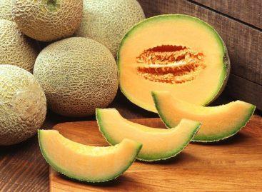 13 impressive health benefits of cantaloupe
