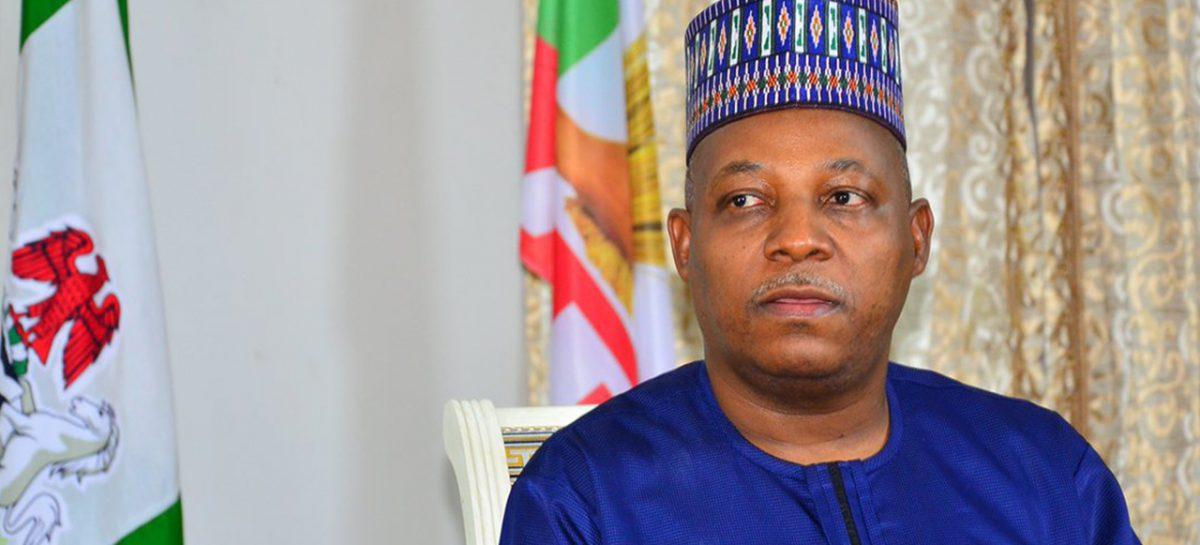 Borno governorship: APC chairman commends Gov Shettima, says no cause for alarm over multiple aspirants