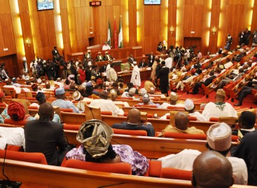 Senate accuses Presidential aide of doctoring 2016 budget