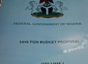 INVESTIGATION: 2016 Budget not missing in NASS