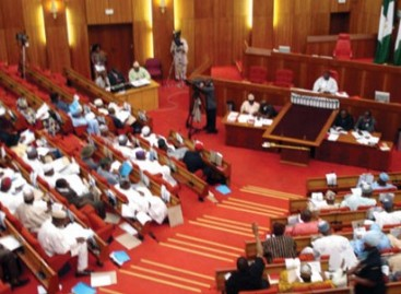 Senate denies plot to impeach Buhari