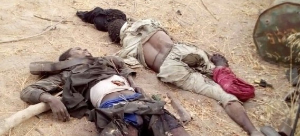 Military says terrorists escaping from Sambisa meet their waterloo