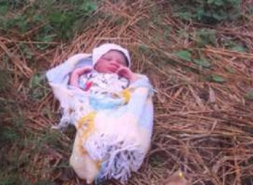 Newborn girl found in Bauchi  well