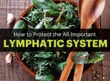 The Lymphatic System: How to Make It Strong & Effective
