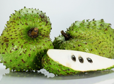 Soursop Fruit 100 Times Stronger At Killing Cancer Than Chemotherapy