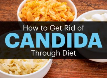 Candida Diet: Foods to eat (and Avoid) to treat candida