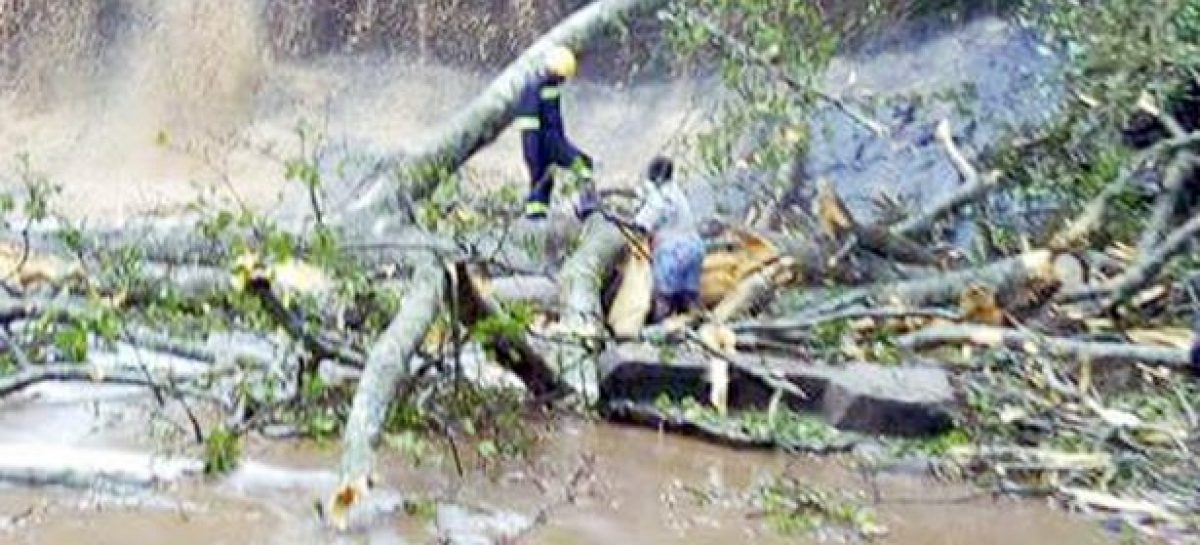 Ghana waterfall mishap kills 20 students
