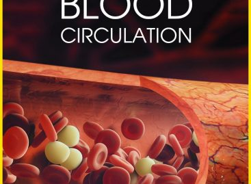 How to improve your blood circulation