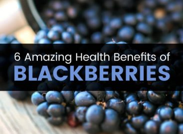6 amazing health benefits of blackberries