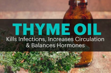 Thyme oil kills infections, increases circulation, balances hormones