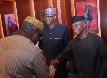 Buhari, ministers hold valedictory session for Fayemi