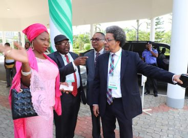 Nigerian govt holds first diaspora investment summit