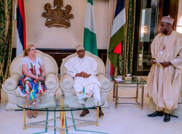 Buhari commends Sweden's humanitarian assistance to insurgency victims